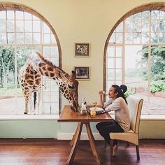 "& @live2folk | Tag your ""giraffe"" friend ✌🏼️ 
