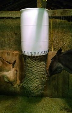 I've been using small mesh hay nets and other types of slow feeders for years. Having had an insulin resistant horse previously, and two easy keepers currently, slow feeders are very importa… Horse Slow Feeder, Hay Feeder For Horses, Horse Stalls, Horse Barns, Horse Paddock, Horse Shelter, Horse Care Tips, Run In Shed, Horse Trailers