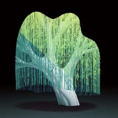Drake Brodahl - Willow tree experiment