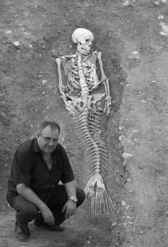 Mermaid Skeleton... huh, so does that mean that fairytales really do exist?! ummm this is weird.......