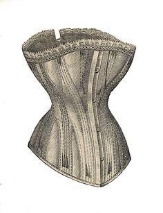 vintage corset illustration