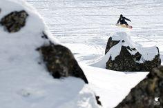 #snowboard #rock #spot in #tatras