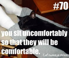 Yup!!  Just did it yesterday. Laid at the very edge of my bed so Jynx wouldn't have to move.