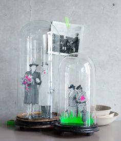 Mettre vos photos de famille sous une cloche de verre, ou comment moderniser son album photo.
