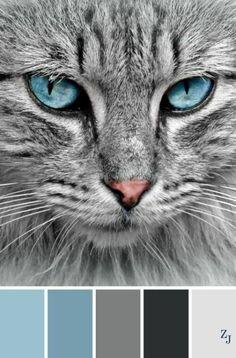 ZJ Color Palette 365 von imelda ZJ Color Palette 365 von imelda The post ZJ Color Palette 365 von imelda appeared first on Wohnzimmer Grau. Color Schemes Colour Palettes, Blue Colour Palette, Color Palette Blue, Grey Paint Colours, Bedroom Colour Schemes Blue, Colours That Go With Grey, Blue Color Combinations, Bedroom Colour Palette, Palette Design