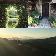 CIAO FROM TUSCANY!!!! it is hard to catch with the camera this amazing sunset light and literally impossible to catch the scents #cookingwithstefania #italiancookinglessons