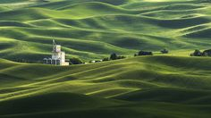 """""""The Rolling Fields of Palouse"""" Often referred as the Tuscany of America, the Palouse region of Washington State"""