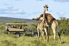Travelzoo: 2018 to see Africa :https://bookingmarkets.net/en/travelzoo-2018-see-africa/
