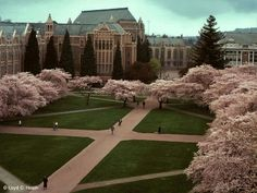 University of Washington 2013