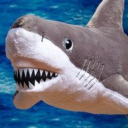 Take a look at the Sharks in the Water: Toys & Books event on #zulily today! For those who like sharks!!
