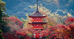 An Easy Kyoto 4 Day Itinerary for Autumn (or any season!) | Spiritual Travels Day Trips From Tokyo, Tokyo Trip, Las Vegas, Fushimi Inari Taisha, Florida, Easy Day, Seasons Of The Year, Kyoto Japan