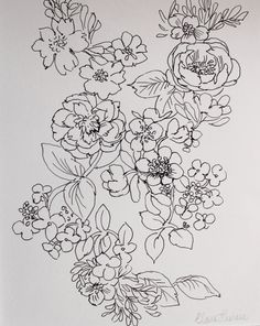 Original signed, hand-drawn & mounted floral linear hedgerow briar rose drawing