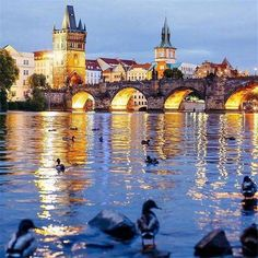 There is usually some snow in Prague before Christmas and then again in January, February, and even March, but every Prague winter is different. World Travel Guide, Travel Guides, Prague Winter, Visit Prague, Prague Czech Republic, Tour Guide, Travel Destinations, Scenery, Tours