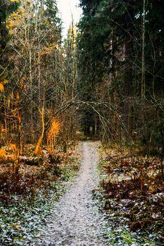 Karelia (Russia) by Ellen Tyn cr.nw.