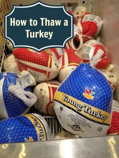 Thanksgiving Food Safety How To Thaw A Turkey - Just 2 Sisters