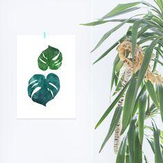 #home #plants #kunstdruck #pflanzen #monstera #postermonstera #posterpflanzen #blumen #natur #naturliebe #nature #grün #blau #aquarell #wasserfarben #elegant #schlicht #dekorativ #noull #dawanda