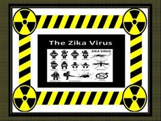 A summation of the current Zika Fever outbreak. Three pages of text with…
