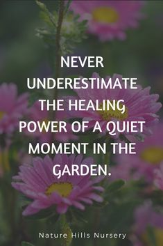 If your garden is your therapist: . - Garden Care, Garden Design and Gardening Supplies Garden Care, Gardening Supplies, Gardening For Beginners, Gardening Tips, Gardening Services, Allotment Gardening, Kitchen Gardening, Fairy Gardening, Vegetable Gardening