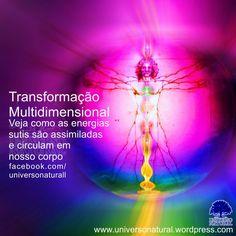 Veja como as energias sutis são assimiladas e circulam em nosso corpo #universonatural #limpezaenergetica #mergulhointerior