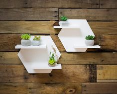 Hexagon Shelf Set for Wall Home Decoration White Shelves for Wall Plant Holder Minimalist Style Room Wall Decor Artwork (Item House Plants Decor, Plant Decor, Wall Shelves Design, Wall Design, Shelf Wall, Unique Wall Shelves, Cool Shelves, Hexagon Shelves, Geometric Shelves