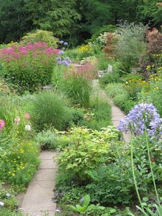 673 Best Backyard Gardening Images In 2019 Back Garden Ideas