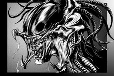 PredAlien - ashasylum.deviantart.com