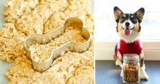 You can make your own healthy dog treats, and they taste great.
