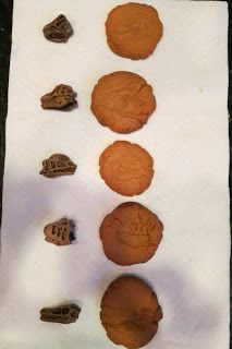 Fossil Cookies from Expedition Montessori