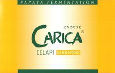 青パパイア発酵食品カリカセラピSAIDO-PS501