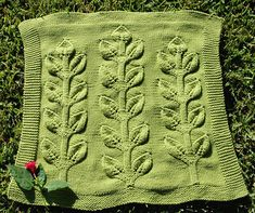 sprout-front by evergreenknits, via Flickr.  Makes me wish I could knit.