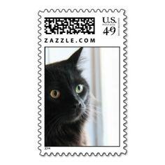 Black Cat profile, postage stamp, peek-a-boo!