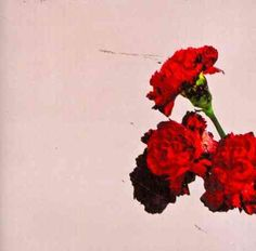 John Legend - Love In The Future, Black floral