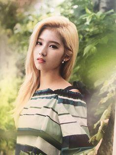 Twice, once, kpop idol, asian beauty girls, korean idol Nayeon, Kpop Girl Groups, Korean Girl Groups, Kpop Girls, Beautiful Japanese Girl, Beautiful Asian Girls, Twice Wallpaper, Shy Shy Shy, Tzuyu And Sana