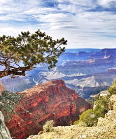 Grand Canyon, Arizona  #southrim #grandcanyon   Every time I visit it's as amazing as the time before