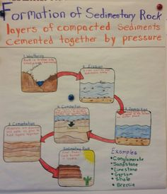 Formation of Sedimentary Rock anchor chart