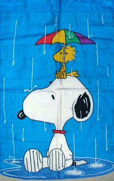 Snoopy and Woodstock ~ Rainy day Images Snoopy, Snoopy Pictures, Peanuts Cartoon, Peanuts Snoopy, Charlie Brown Und Snoopy, Snoopy Und Woodstock, Snoopy Wallpaper, Peanuts Characters, Fictional Characters