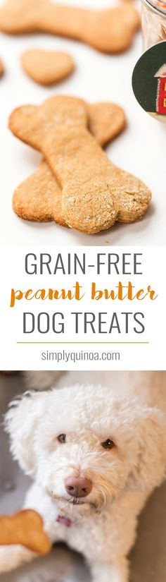 These GRAIN-FREE Peanut Butter Dog Treats are quick, easy and make a great holiday gift. They're high protein, use just 6 ingredients and dog-approved!