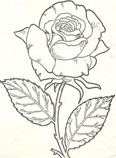 Flower Sketch Images, Flower Line Drawings, Painting Templates, Art Template, Thread Painting, Fabric Painting, Colorful Drawings, Art Drawings, Disney Princess Coloring Pages