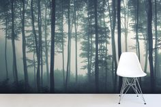 Check out the Sea of Trees Forest Mural Wallpaper, a minimal forest wallpaper design that will impress. With soft grey tones you can achieve a modern look. Tree Wallpaper Mural, Tree Wall Murals, Forest Wallpaper, Photo Wallpaper, Landscape Wallpaper, Perfect Wallpaper, Foggy Forest, Misty Forest, Dark Forest
