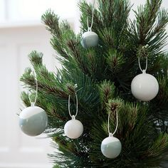 Use the decorative baubles on fresh sprays in a beautiful vase or hang them in the window or on the Christmas tree.