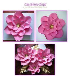 94 best paper flower diy videos images on pinterest giant paper paper flower diy package by thecraftysagannie on etsy mightylinksfo