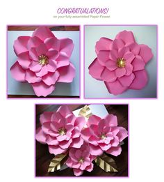 Paper Flower DIY Package by TheCraftySagAnnie on Etsy