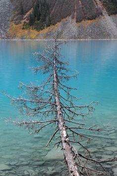 Lake Louise Banff National Park - Canada
