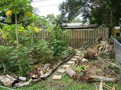 Florida Survival Gardening: The Great South Florida Food Forest Project