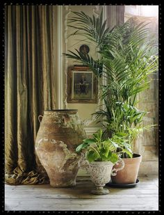 HOME & GARDEN: Ambiance bohème à Little Venice Office/work spaces inspiration for Katharine Dever Indoor Plant Pots, Potted Plants, Indoor Tree Plants, Green Plants, Air Plants, Cactus Plants, Plantas Indoor, Decoration Plante, Deco Boheme