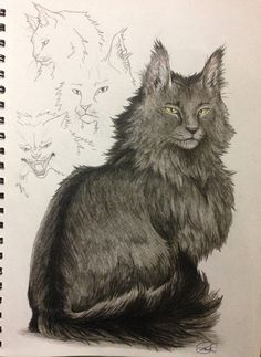 Warrior Cats -- Graystripe by SoooThisIsArt----Wow on DeviantArt