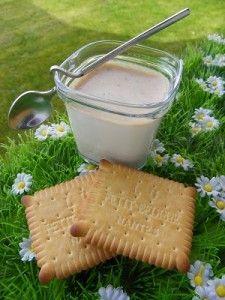 Ingrédients : 1 litre de lait 1 sachet de ferments lactiques Alsa 150 g de petits beurre 5 g de sucre vanillé 45 g de sucre Préparation : Mettre dans le bol, les petits beurre puis mixer 10 secondes à vitesse 6 à l'arrêt de la minuterie, ajouter le reste... Mini Fruit Tarts, Mini Tart, Tart Filling, Thermomix Desserts, Sugar Cookie Dough, Cool Birthday Cakes, Homemade Ice Cream, Recipe For Mom, Tart Recipes