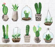 New succulent drawing illustration clip art ideas Succulents Drawing, Cactus Drawing, Cactus Painting, Watercolor Succulents, Watercolor Cactus, Cacti And Succulents, Watercolor Paintings, Drawing Art, Pineapple Watercolor