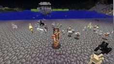 Orphea2012 Youtube et Minecraft: Minecraft   Orphea2012 entourée de ses Minions