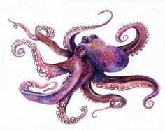 items for octopus art on Etsy Octopus Drawing, Octopus Painting, Octopus Tattoo Design, Octopus Art, Fish Drawings, Watercolor Paintings Abstract, Watercolor Print, Tattoo Watercolor, Abstract Art